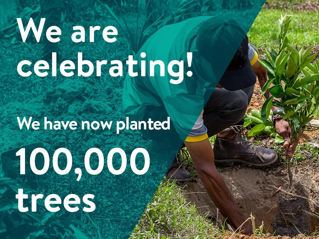 100k-trees_primary