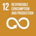 sdg_12-responsible-consumption