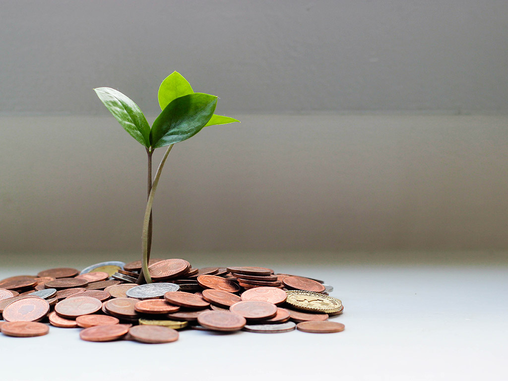 The Hidden Benefits Of Sustainability To The Bottom Line