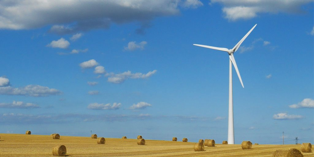 How To Become A Carbon Neutral Business In The UK