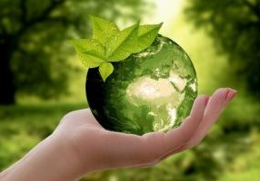 Sustainable Business Article